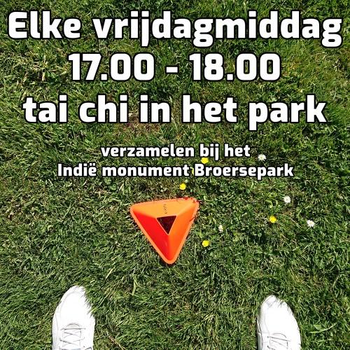 tai_chi_oefenles_park_amstelveen-8af6ee9c0b4f535ecb77450baf7f4ad3