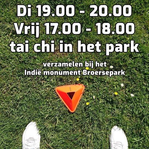 tai_chi_oefenles_park_amstelveen_2-ec2e703d298424d9816712f3def60a1e